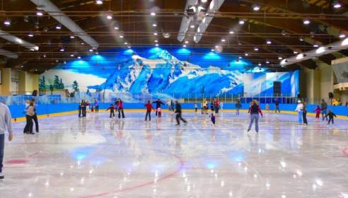 Презентовали проект нового ледового катка в Тамбове