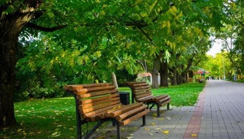 На улице Чичерина обустроят парк