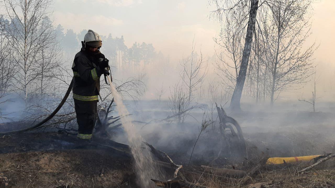 Пожары в регионах России, апрель 2021 г.