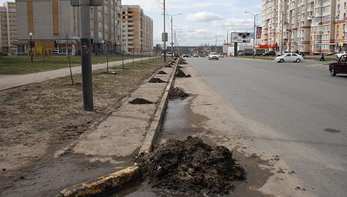 Улица Чичерина в Тамбове, уборка улиц