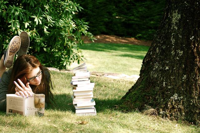 Библиотека на траве. Фото cityguide-spb.ru