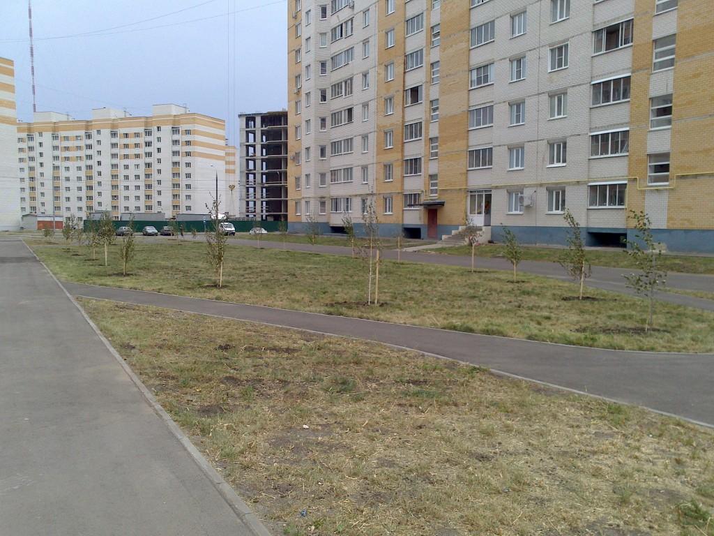 Зеленая зона в мкрн Уютный