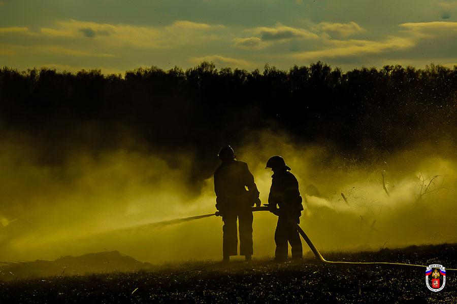 Правительство России установило запрет на выжигание сухой травы