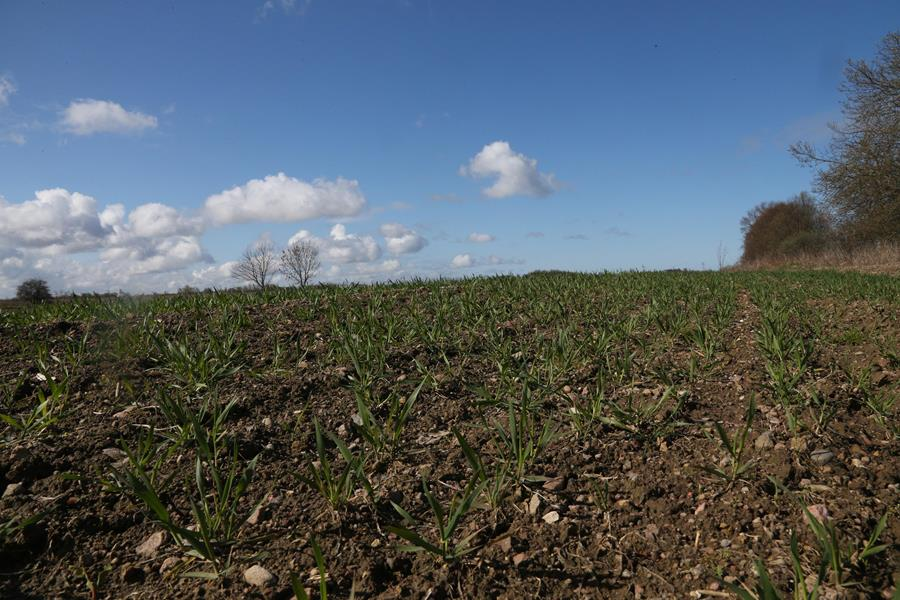 Представители сельскохозяйственной отрасли региона начинают готовиться к весенне-полевым работам, в том числе и с помощью Сбербанка.