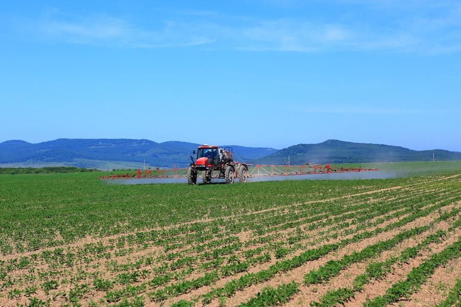 Тамбовская область получит госсубсидию на развитие растениеводства