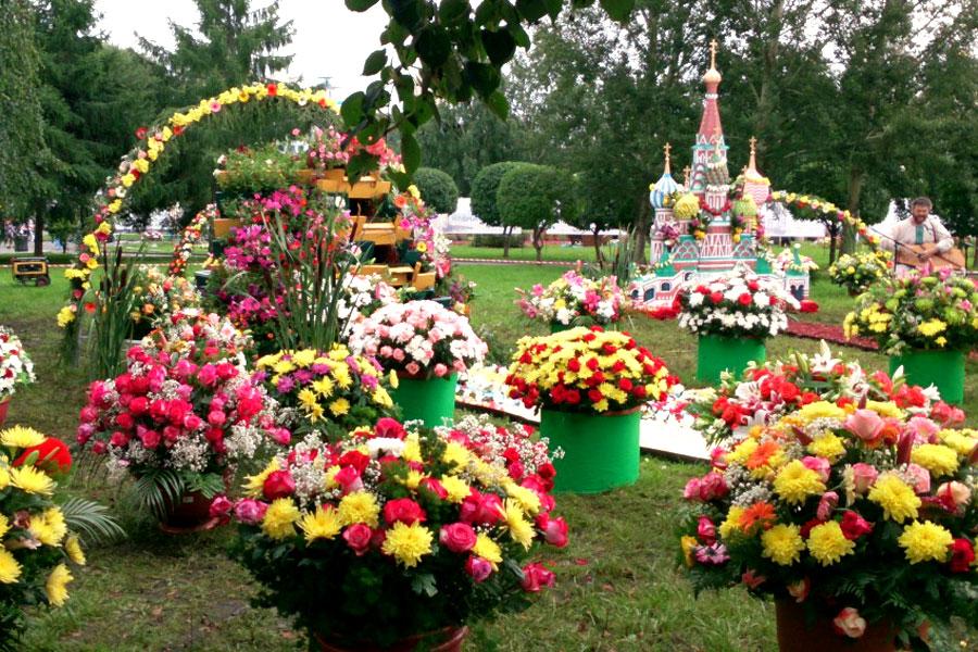 На выходных в Тамбове пройдет юбилейная выставка цветов