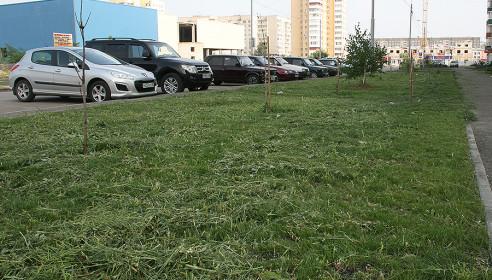 Покос травы в городе