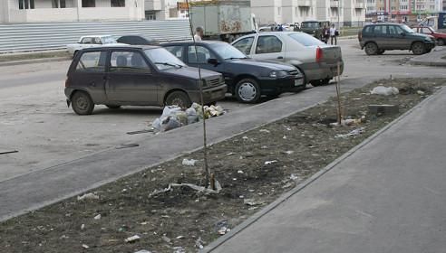 На улицах микрорайона Московский гибнут каштаны