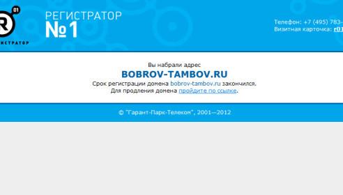 Неофициальный сайт главы Тамбова Боброва отключен за неуплату