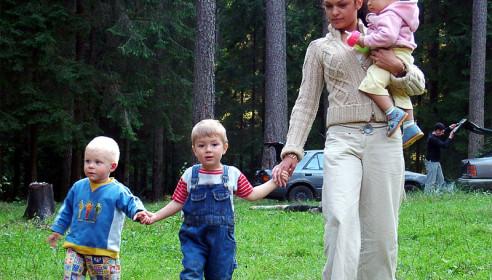 Выдачу земельных участков многодетным семьям в Тамбове ускорят