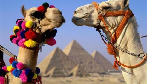 Тамбовчане смогут отдохнуть в Египте без визы