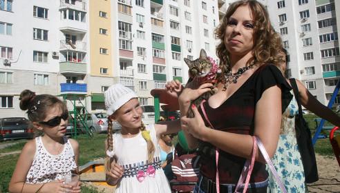 """Участник выставки """"ЛапУшки"""" - кошечка Масяня"""