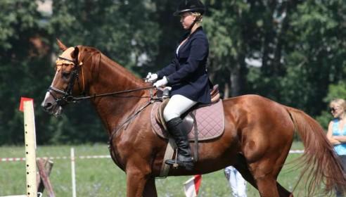 Соревнования по конному спорту в Тамбове