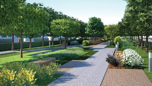 На северо-западе Тамбова появится парк площадью 30 гекторов