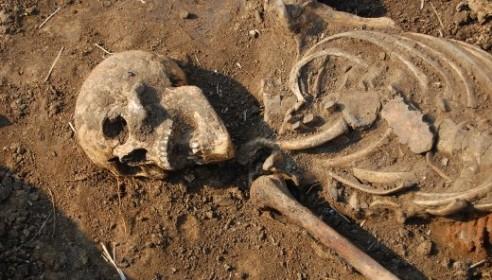 Многодетная семья откопала на своем участке останки четырех человек