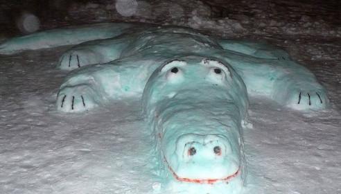 Снежный крокодил