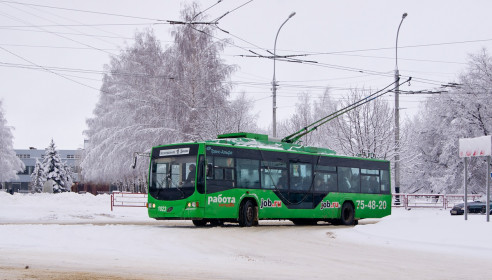 Тамбовские троллейбусы
