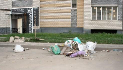 Мусор у дороги на улице Ореховой