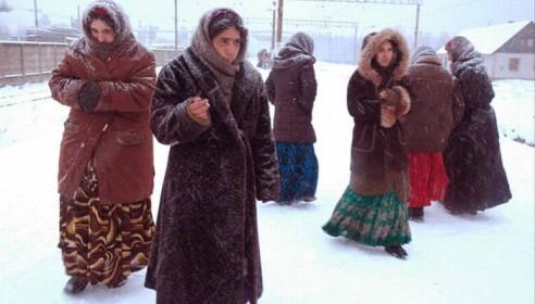 Цыган окультурят