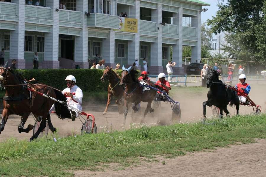 Соревнования на тамбовском ипподроме