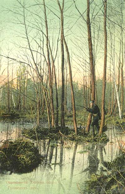 Река Цна на цветных почтовых карточках