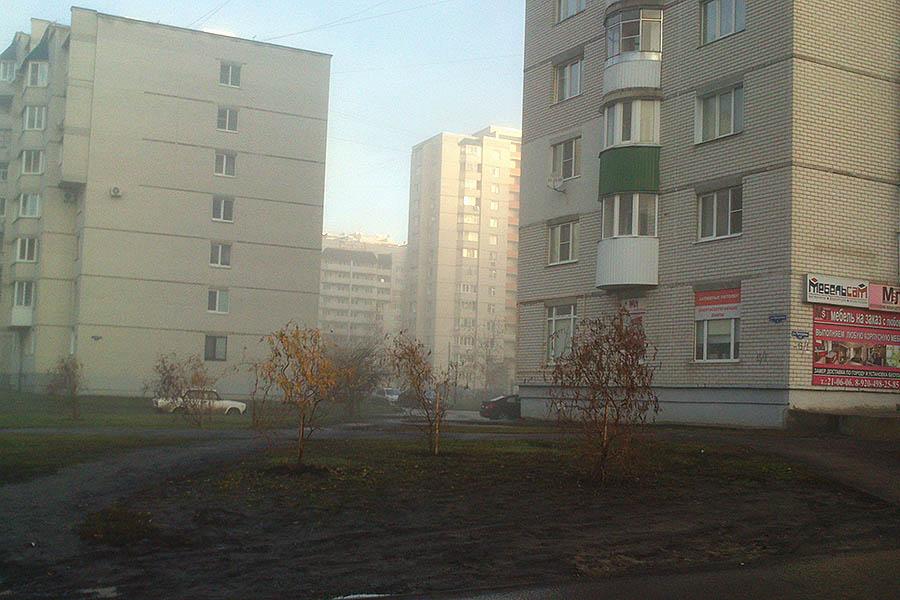 Озеленение в мкр Московский