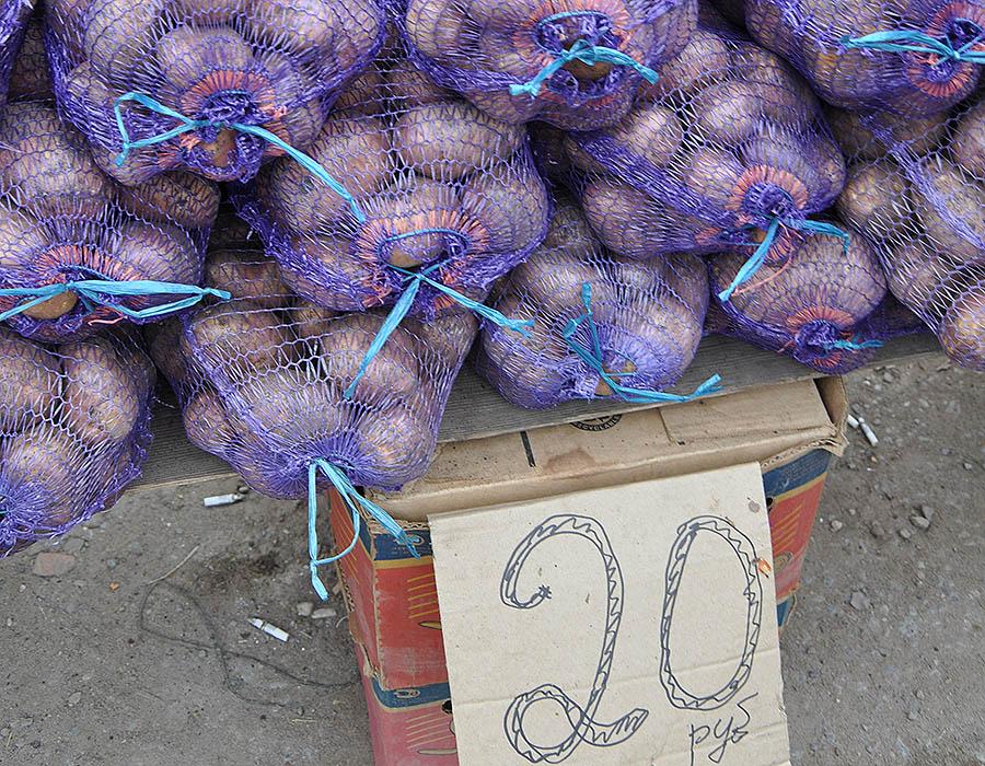 Запасы картофеля