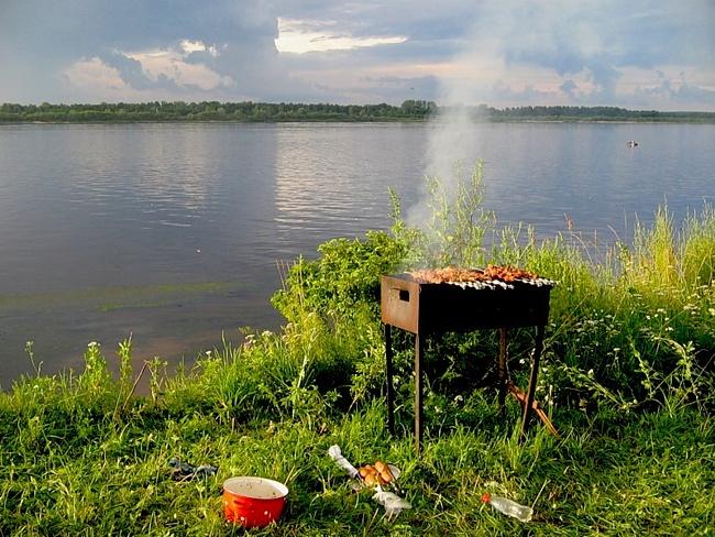 Зона барбекю в тамбовском парке