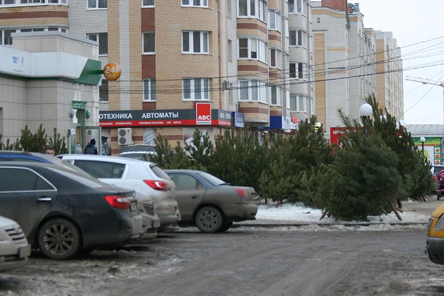 Торговля елками у Сбербанка