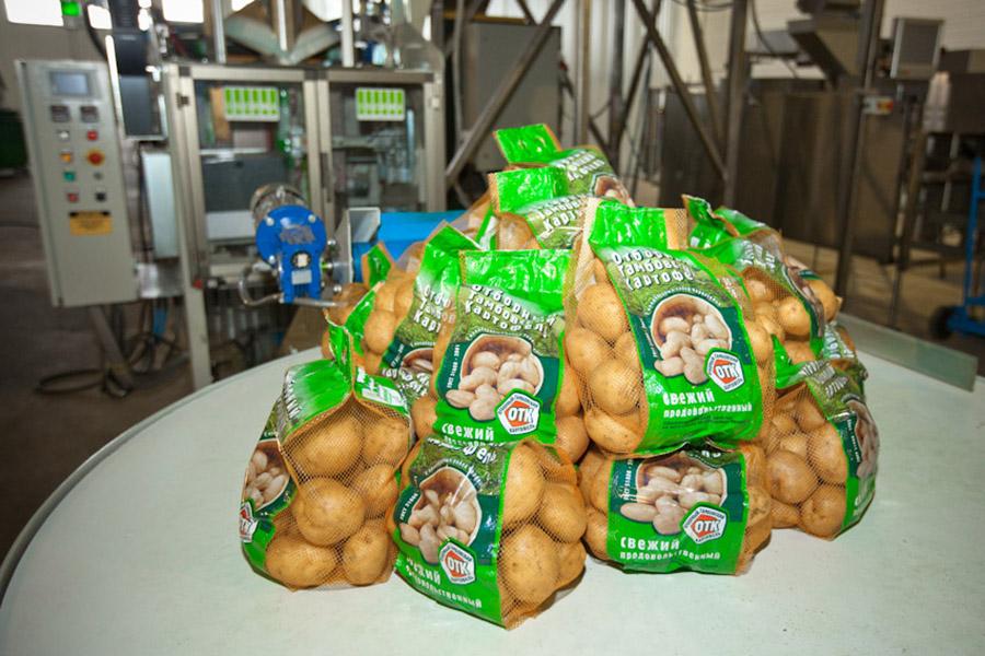 Тамбовский картофель. Фото Роман Канина.