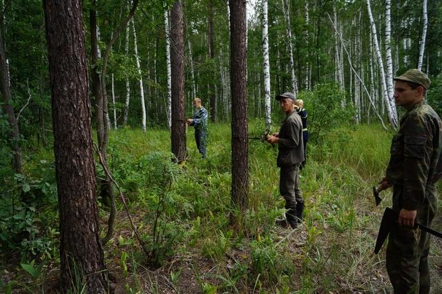 Леса Тамбова