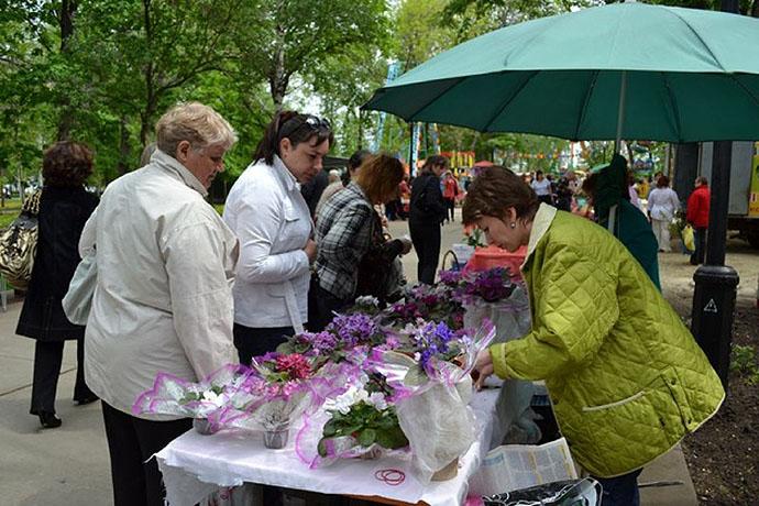 В Тамбове пройдет восьмой Фестиваль цветов. Фото ВТамбове.