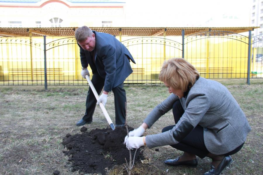 Озеленение Московского
