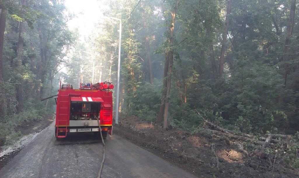 Пожар в парке Дружбы, фото vk.com/stadiontmb