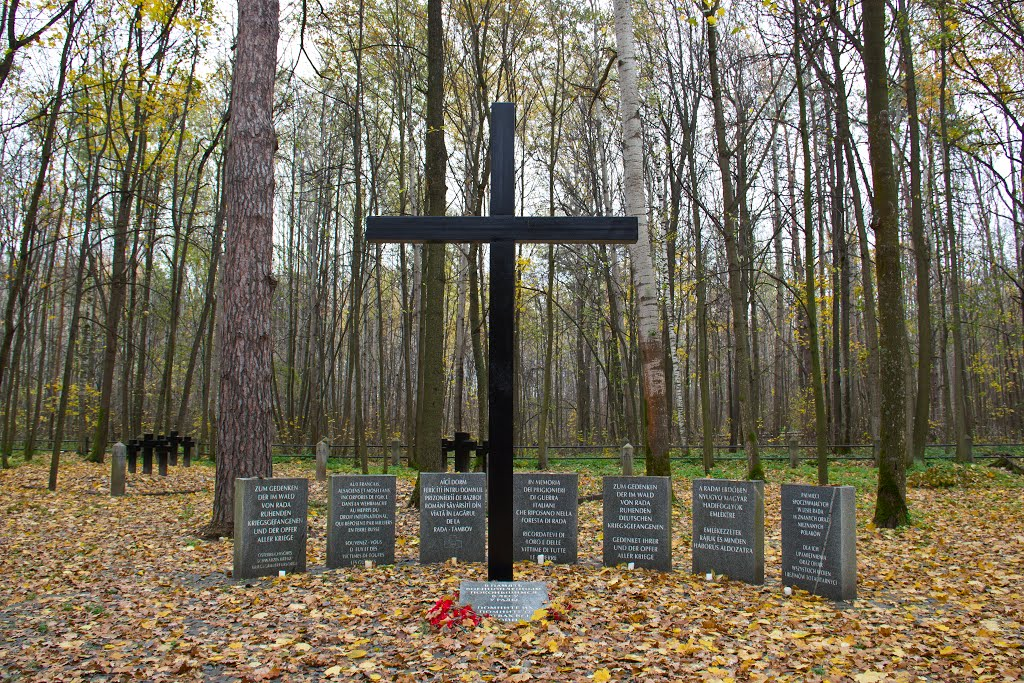 Интернациональное кладбище военнопленных Тамбов-Рада. Фото panoramio.com