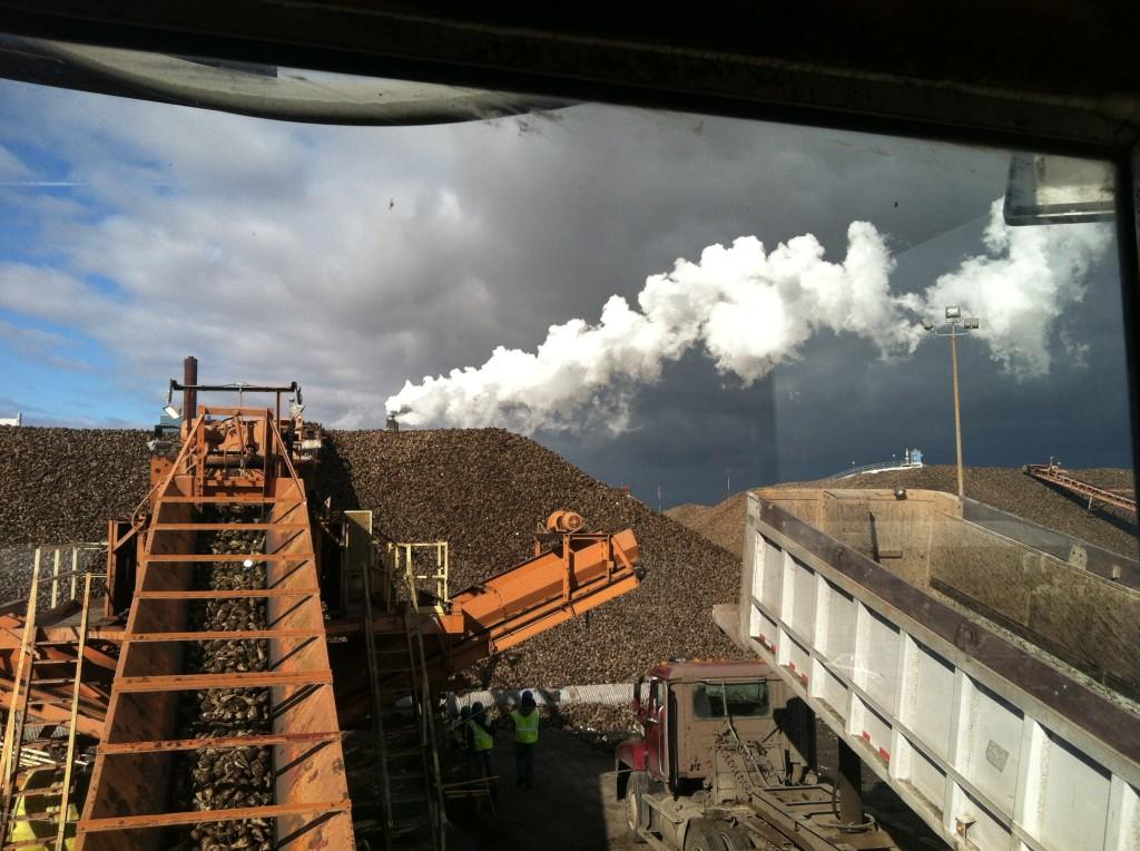 Липецкий сахароперерабатывающий завод