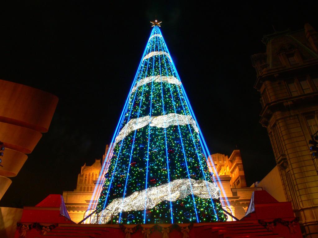 Губернаторская елка
