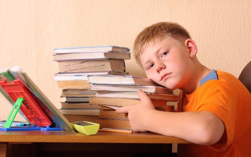 Ученик и домашнее задание