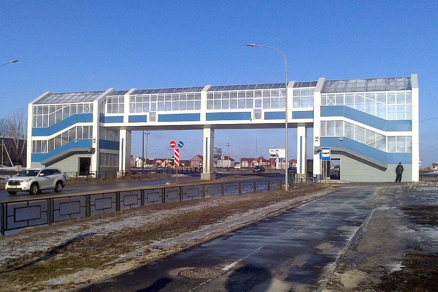 Надземный пешеходный переход на Мичуринской