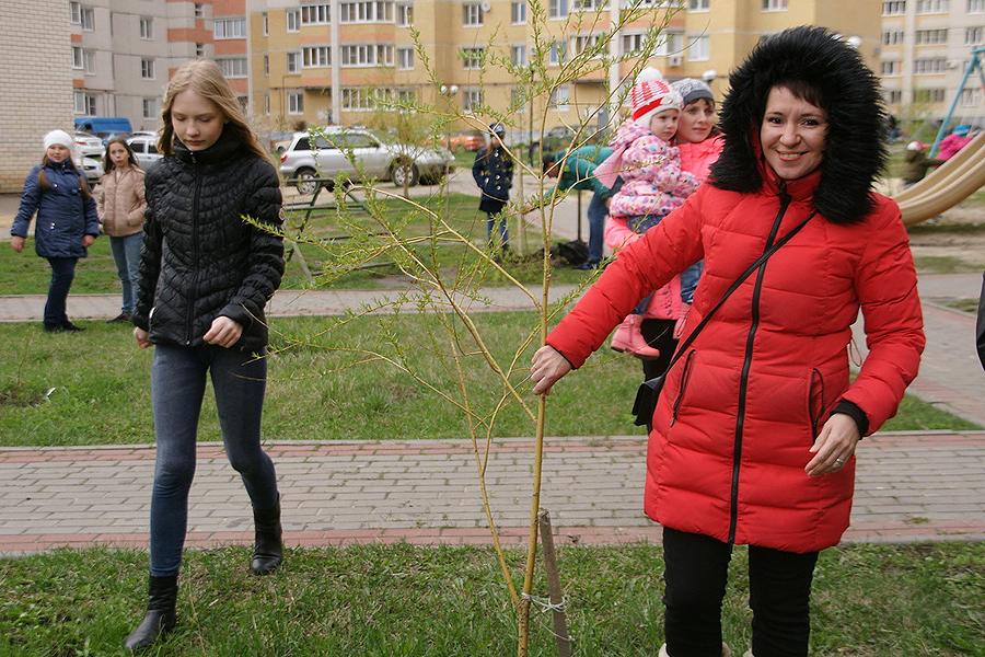 Жители принимают участие в озеленении двора