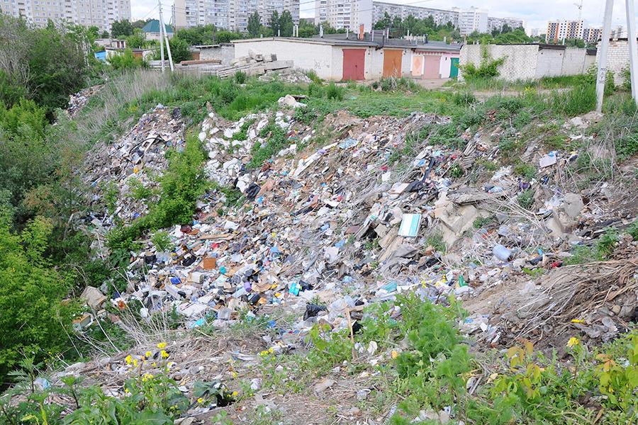 Стихийная свалка на Рылеева. Фото - информационное управление администрации города Тамбова