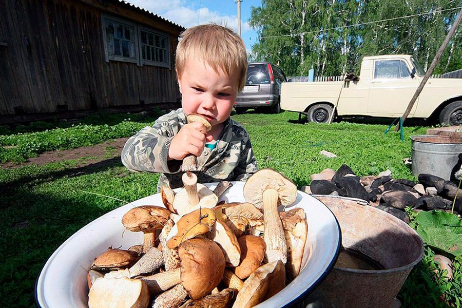 Ребенок и гриб