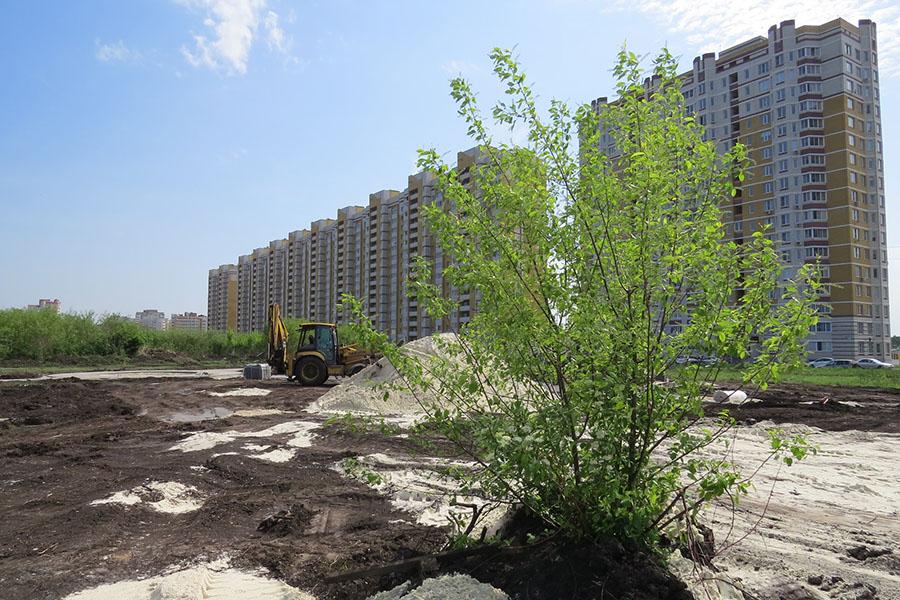 Деревья строители стараются сохранить
